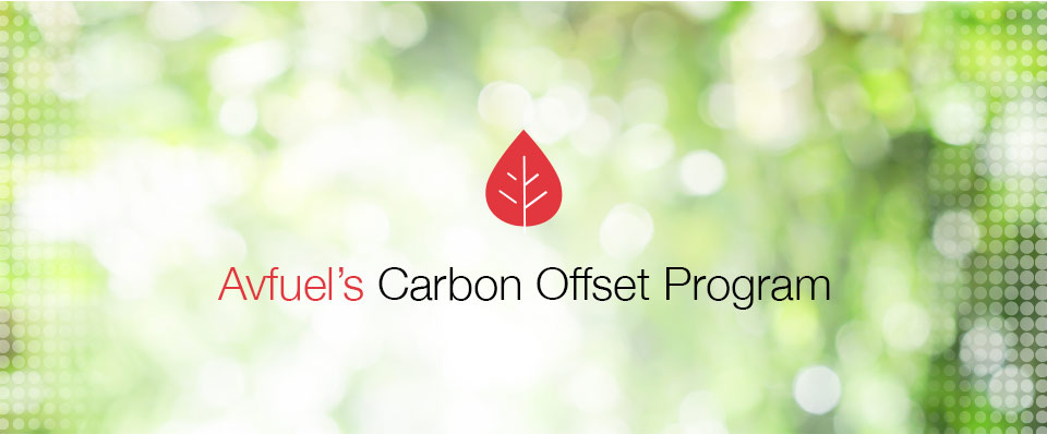 Offset Carbon with Avfuel